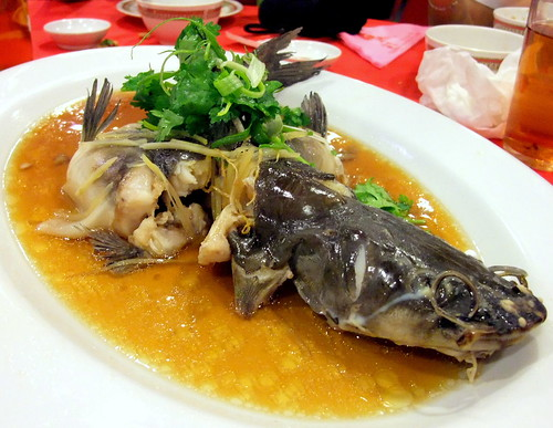 Steam Pak So Kung (A breed of catfish)