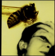 .was ich denke. (.geier.) Tags: girl fly hand wasp head popart montage mdchen fliege kopf wespe