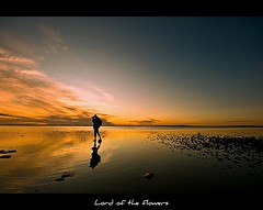 Lonely Photographer... (LORD OF THE FLOWERS) Tags: light sunset people cloud lake reflection nature silhouette horizontal standing turkey outdoors photography asia solitude photographer adult trkiye fulllength saltlake lakeshore watersedge 1020mm dramaticsky reflexions ankara adultsonly scenics oneperson capitalcities tuzgl colorimage ereflikohisar beautyinnature onemanonly canonrebelxti platinumphoto middistance thebestofday gnneniyisi crazyheart natureselegantshots micarttttworldphotographyawards micartttt michaelchee