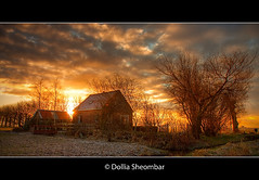 Farm House at Dawn (DolliaSH) Tags: morning trees light sunset sky orange sun house color sol colors clouds farmhouse sunrise canon landscape atardecer photography dawn lights soleil photo zonsondergang topf50 tram