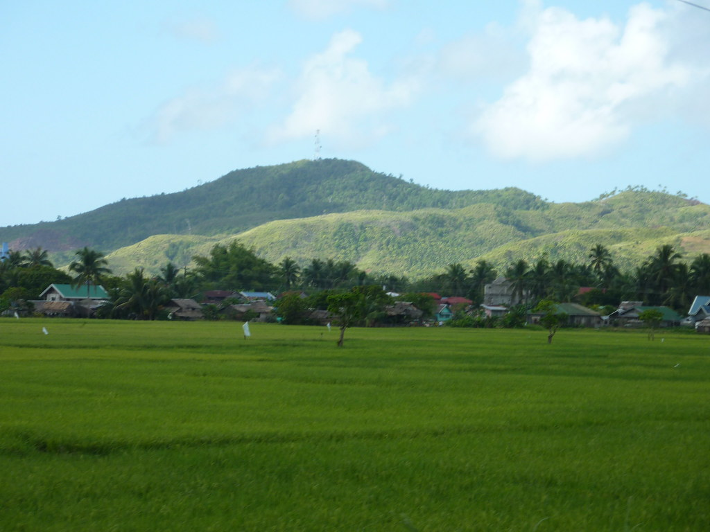Guiam-Tacloban (8)