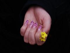 Pink Pipe (Krmnfont (Egerszegi Szilvia)) Tags: pink flower fashion lumix hungary acrylic hand finger nail budapest pipe decoration panasonic nails magyar acryl virg divat 2010 nailart hungarian ujj magyarorszg fz50 rzsaszn whoman kz n ni dmcfz50 akril mkrm krm nailarts cs actificial mkrmdszts porceln3dmkrmdszts decoratednail