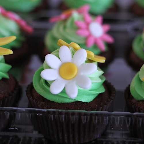 Dark Red Velvet Cupcakes with Cream Cheese Frosting & Marshmallow Fondant Spring Flowers