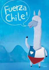 fuerza chile! (:raeioul) Tags: chile llama www polar vamos fuerza caramba raeioul raeioucom