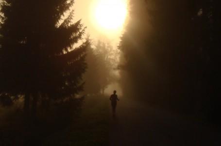 Běhat ráno nebo večer?