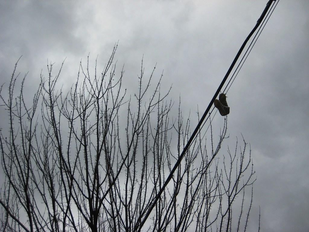 2010-03-21 shoes 001
