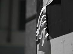 As your blather disappear (_n_i_n_j_a_) Tags: street urban italy stilllife milan photography town photo still image milano olympus ep1 zd stillimages