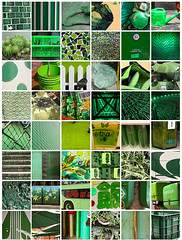Think Green Flickr set
