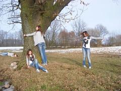 week nine (Janina Mühlenhardt) Tags: old england snow tree nature dance hug nine lie clones sit week jup