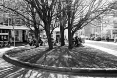 Light (Chris Bakker) Tags: park street city trees anna holland netherlands dutch canon square eos la bomen terrace d den nederland s hague 450 plein terras haye stad haad 450d pauwlona paulownastraat gravenshage