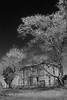 Abandoned Farmhouse B&W (Uncle Phooey) Tags: blackandwhite bw tree abandoned farmhouse rural fence decay scenic explore forgotten missouri weathered clapboard ruraldecay gnarled dilapidated springtime handpump wellpump southwestmissouri unclephooey scenicmissouri
