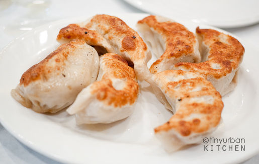 Pan Fried Dumplings