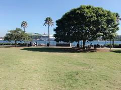 Pyrmont Point Park