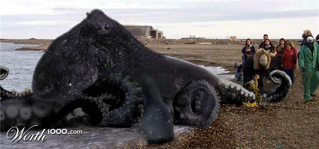 a humongous octopus lies on the beach. some humans stand and marvel in its presence.