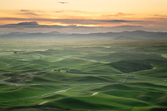 Palouse Sunrise: Steptoe Butte, Washington (Ivan Sohrakoff) Tags: sunrise landscape washington spring farm wheat hills fields crops farmer agriculture washingtonstate rollinghills daybreak palouse easternwashington landscapephotography steptoe steptoebutte thepalouse ivansohrakoff