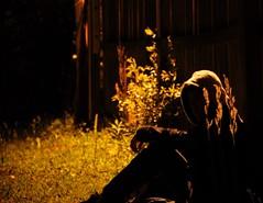Sit Along the Light (C.J. Newberry) Tags: light shadow man guy grass night dark sitting darkness sit