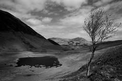 Highnook Tarn (M-J Turner) Tags: light england water clouds hill lakedistrict cumbria tarn fell loweswater lowfell highnooktarn blakefell gavelfell bej blackcrag carlingknott