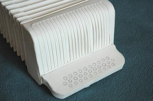 Prodigy child essay accordion