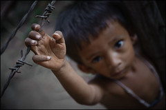 Ly,  4 yrs old  (Alessandro Vannucci) Tags: poverty asia cambodia forsakenpeople siemreap cambogia iannacell