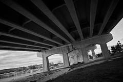 Under the bridge (Frank Scallo) Tags: bridge blackandwhite bw nikon shore redhotchilipeppers belmarnj 24mmf28d d700