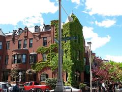 Boston (ccap77) Tags: boston newburystreet intersection