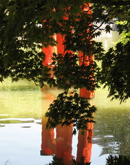 Torii Reflections (Puzzler4879) Tags: newyorkcity gardens brooklyn canon reflections vibrant ps gateway brooklynbotanicgarden ponds reflexions torii japanesegardens pointshoot botanicgardens canonpowershot musictomyeyes toriigate canondigital flickrpedia canonaseries supershot canonphotography bej japanesegateway flickraward heartawards theunforgettablepictures japenesehillandpondgarden a580 theperfectphotographer canona580 qualitypixels canonpowershota580 powershota580 dragonflyawards handselectedphotographs japanesegates sapphireawards unicornawards mygearandme mygearandmepremium mygearandmebronze mygearandmesilver mygearandmegold mygearandmeplatinum mygearandmediamond