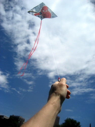 Successfully Flying a Kite