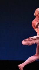 IMG_3938 (skitpero) Tags: ballet men sc festival drag dance shoes comedy dancers southcarolina tights classical parody pointe swanlake spoleto tutu lowcountry ballerinas gaillard paquita enpointe dyingswan entravesti trockaderos trocks lesballetstrockaderodemontecarlo goforbarocco