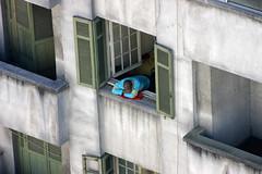LAST FLOOR PROJECT (felipemorozini) Tags: window downtown saopaulo centro sp urbanscenes citta lastfloor felipemorozini