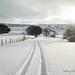 Snowy Jeffrey Hill