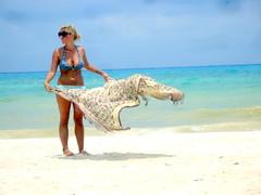 Argentina (ruvalcaba) Tags: beach girl beauty mujer playadelcarmen playa bikini trasero culo beachgirl whitesand hermosa marcaribe quintanaroo senos nalgas caribeansea arenablanca mujerenlaplaya