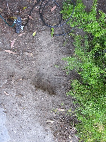 Garden hole