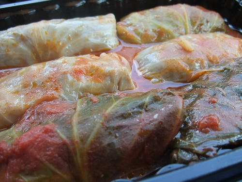 1st Friday Cabbage Rolls