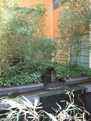 Japan Society garden