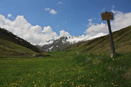 Alpe Vallaccia