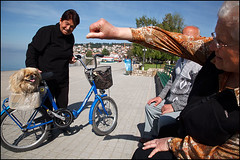 dog on bike - Ohrid (Maciej Dakowicz) Tags: city people dog bike bicycle person europe macedonia ohrid promenade balkans dailylife