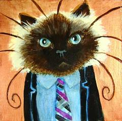 Quinn, A Business Cat (supah) Tags: cat kitty business worker himalayan himmy businesscat