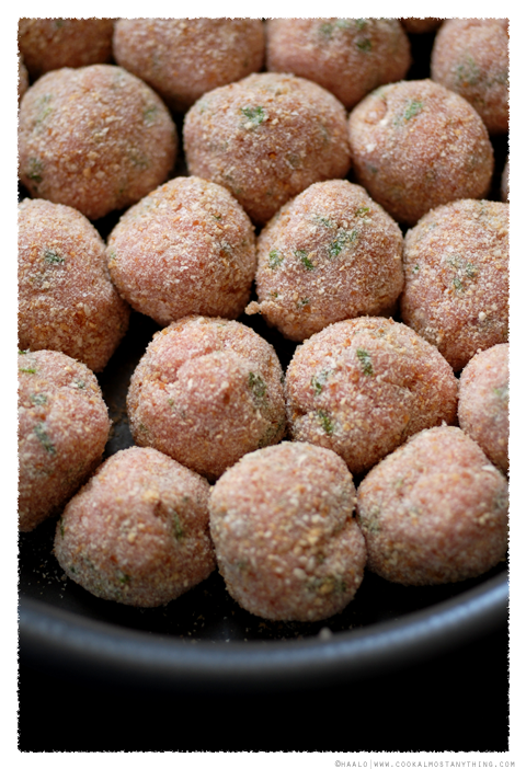 turkey meatballs© by Haalo