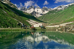 Ripple... (M Atif Saeed) Tags: pakistan horses mountain lake snow mountains reflection nature water landscape areas northern northernareas astor gilgit shounter atifsaeed gettyimagespakistanq1