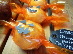pumpkin dômes