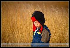 Running in Fields of Gold