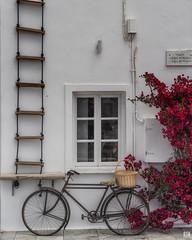 Suspicion (BAN - photography) Tags: bicycle ropeladder window flowers shrub stucco d810 basket oia santorini
