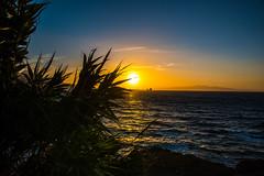 _DSC7575 (PACO NOTARIO) Tags: paisaje estrecho gibraltar ceuta puesta sol atardecer nikon 750 africa europa