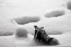 Day 011 | 365 Lonly Snow Steps ! (Nas t) Tags: snow steps lonly