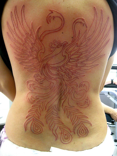 Tatuagem Red Fenix Phoenix Tattoo WIP