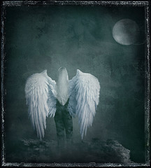 I Am Alive! (*Cristiana*) Tags: texture phoenix nikon thesuperbmasterpiece andrearuskytexture artistictreasurechest redmatrix thelittlebookoftreasures