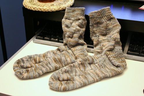 348/365: Socks