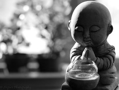 "The newest in the ""Many Face's of Buddha"" (negra223) Tags: light blackandwhite bw ny history window face statue brooklyn happy peace shadows respect emotion bokeh manhattan lol buddha religion praying peaceful tranquility philosophy thoughts strength positive kneeling candleholder divided allrightsreserved millions lotsofsnow wayoflife beliefs represents shotinbw toocoldout 14thstreetunionsquare oneforme worldsgreatestreligion buddhismhinduism likemostreligions christmasshooping"