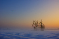 Christmas Eve (Antti-Jussi Liikala) Tags: blue trees winter sunset red sky sun moon white mist snow cold tree field yellow misty fog composition suomi finland d50 skyscape landscape frozen haze nikon finnland december glow afternoon open space north tokina clear polar 1224 ilmajoki theunforgettablepictures christamaseve