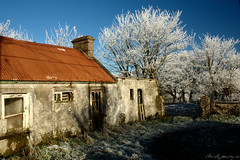 The Bleak Midwinter (Neville Gawley) Tags: ireland roof snow rust frost shack deserted sligo corragated iorn